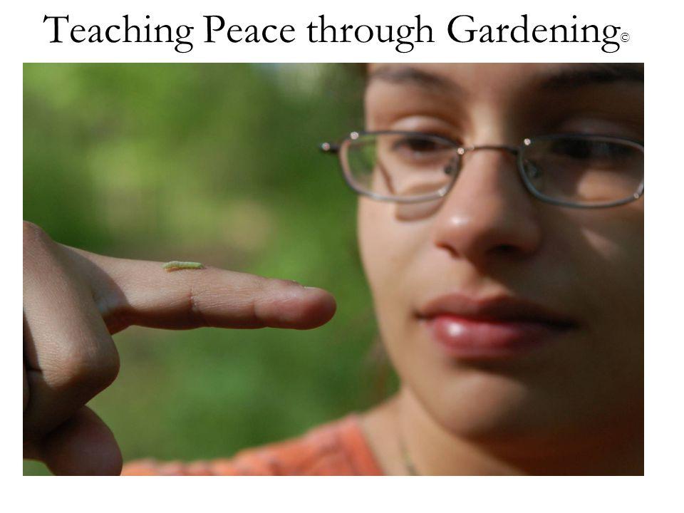 Teaching Peace through Gardening ©
