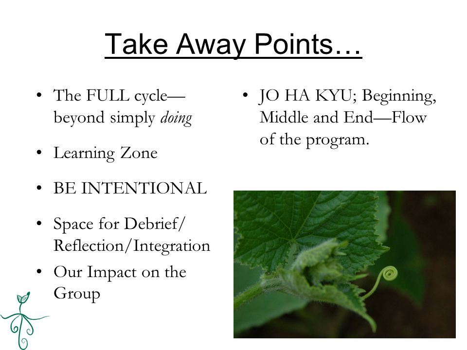 Take Away Points… The FULL cycle— beyond simply doing Learning Zone BE INTENTIONAL Space for Debrief/ Reflection/Integration Our Impact on the Group JO HA KYU; Beginning, Middle and End—Flow of the program.