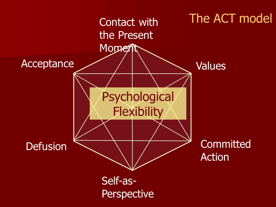 Acceptance Committed Action Values Defusion Self-as- Perspective Contact with the Present Moment The ACT model Psychological Flexibility