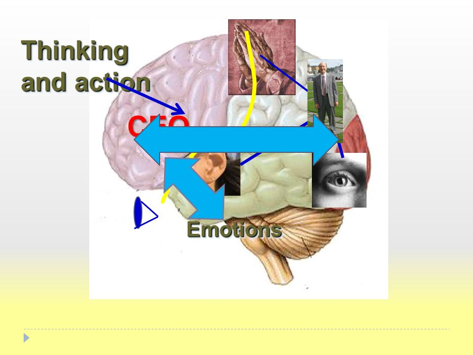 Thinking and action EmotionsEmotions CEO