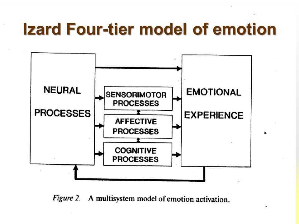 Izard Four-tier model of emotion