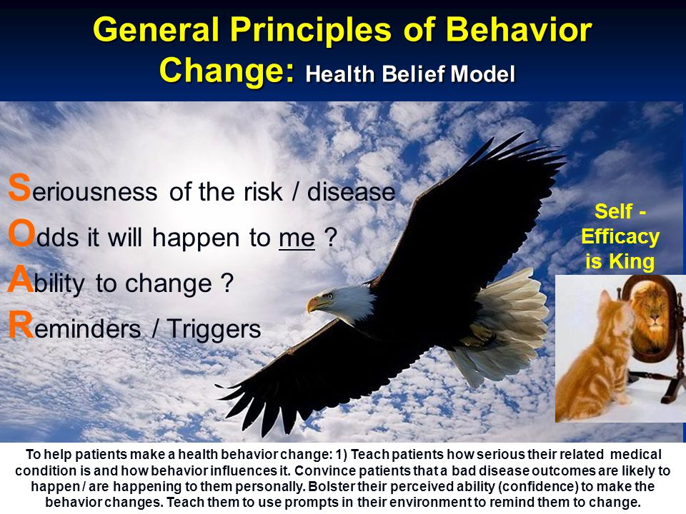 General Principles of Behavior Change: Health Belief Model General Principles of Behavior Change: Health Belief Model S eriousness of the risk / disease O dds it will happen to me .