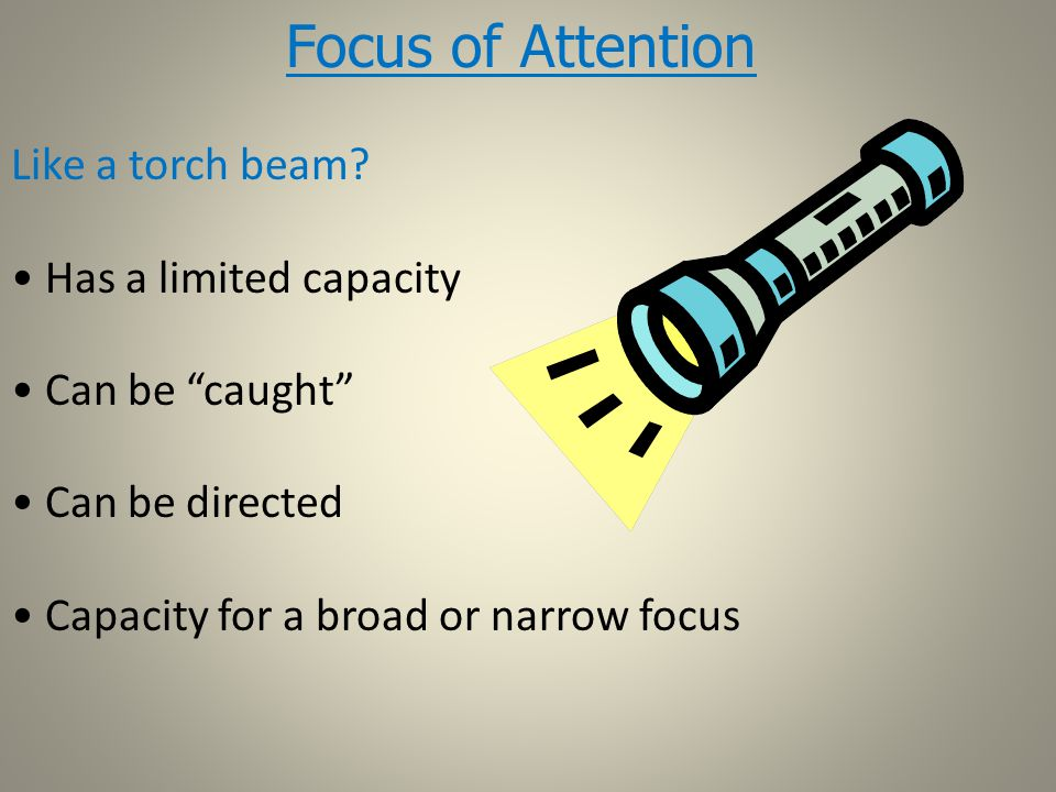 Focus of Attention Like a torch beam.
