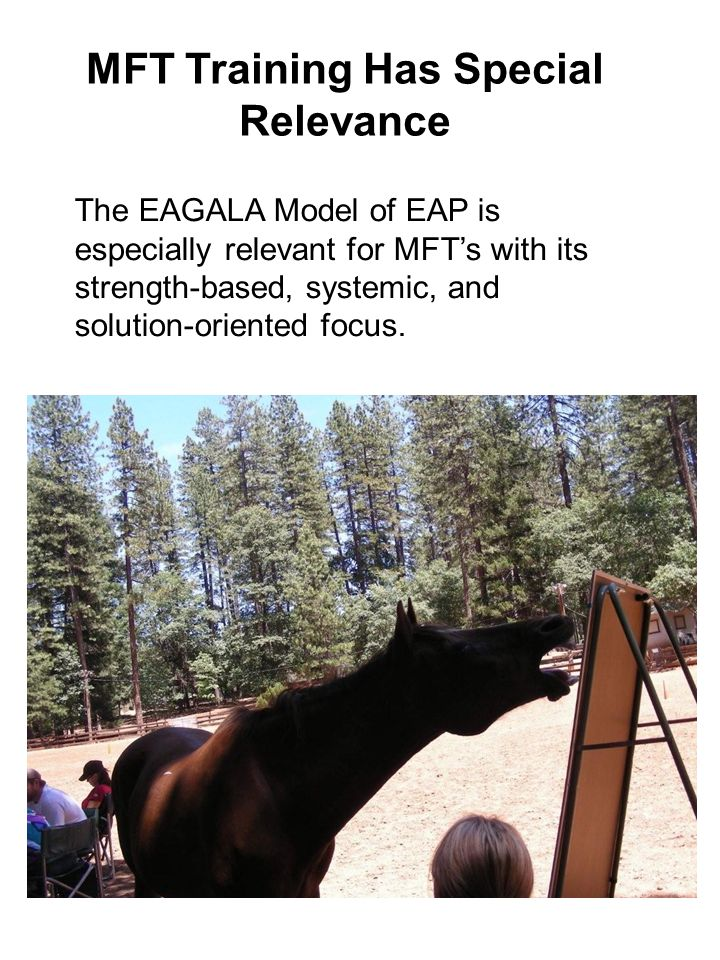 23 MFT Training Has Special Relevance The EAGALA Model of EAP is especially relevant for MFT's with its strength-based, systemic, and solution-oriente