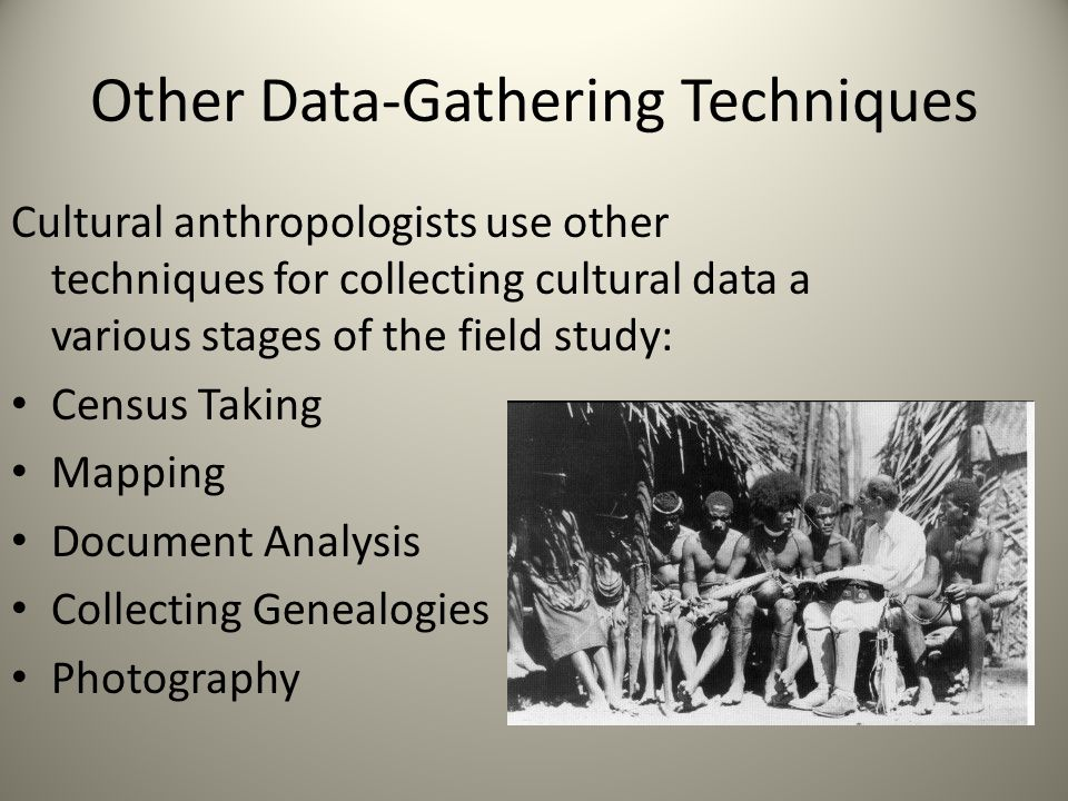 Other Data-Gathering Techniques Cultural anthropologists use other techniques for collecting cultural data a various stages of the field study: Census