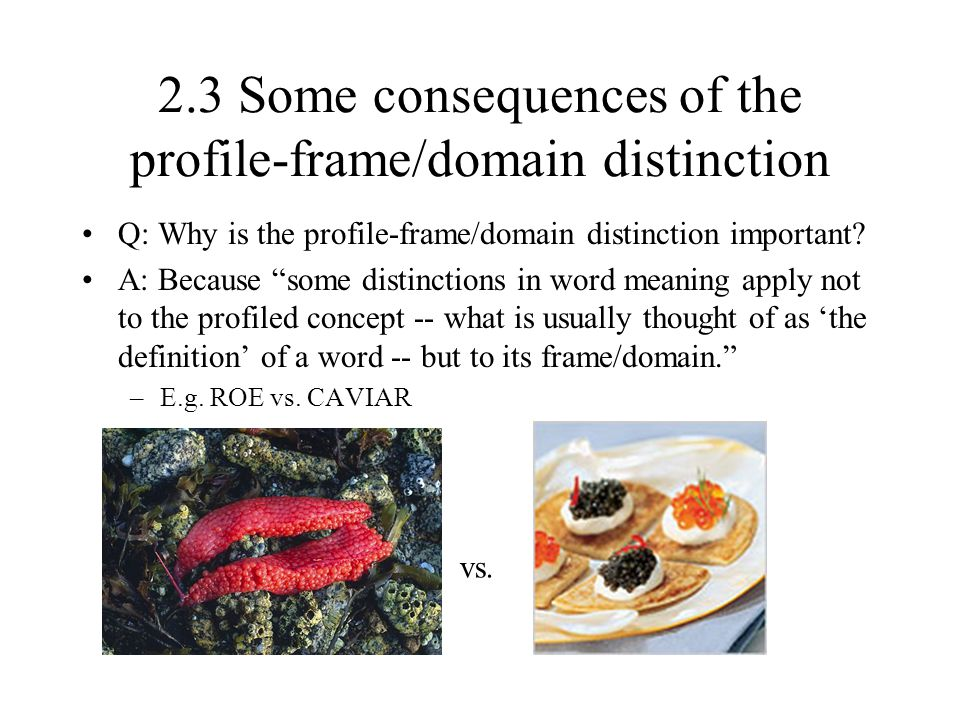 """2.3 Some consequences of the profile-frame/domain distinction Q: Why is the profile-frame/domain distinction important? A: Because """"some distinctions"""