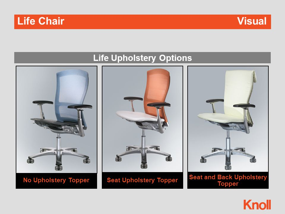 Life ChairVisual Life with Cranbrook ™
