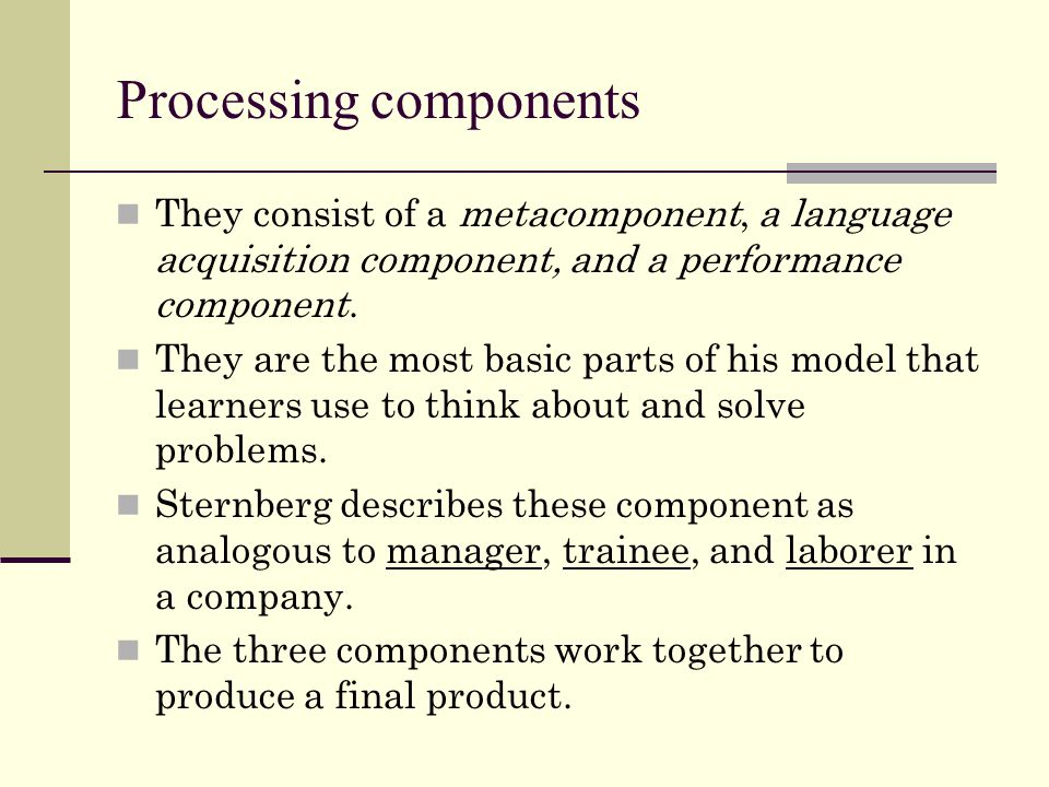 Processing components They consist of a metacomponent, a language acquisition component, and a performance component.