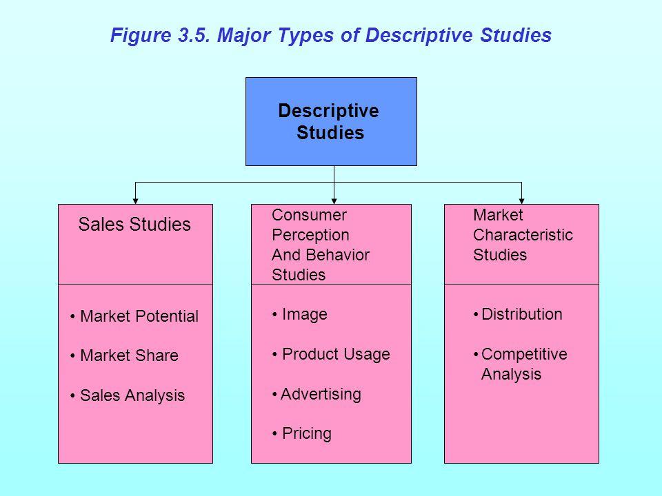 Figure 3.5. Major Types of Descriptive Studies Descriptive Studies Consumer Perception And Behavior Studies Image Product Usage Advertising Pricing Ma