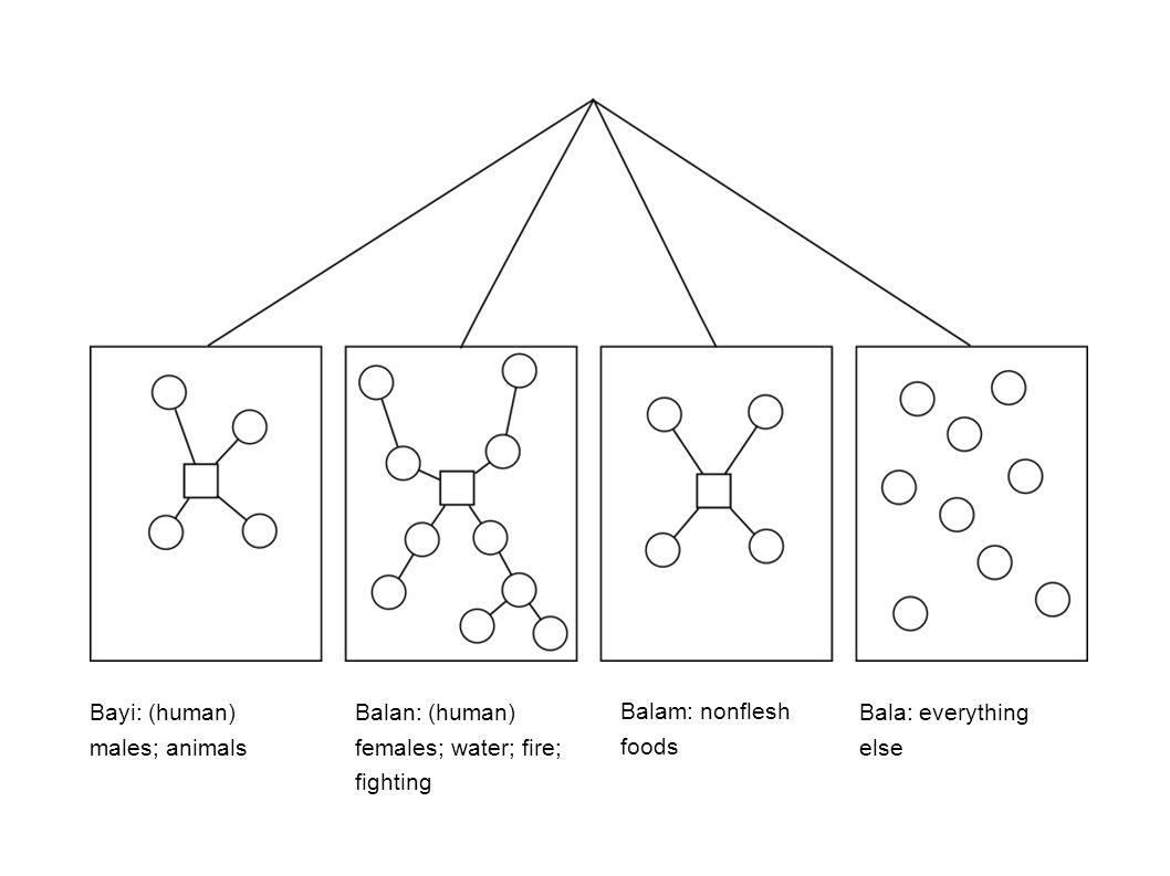 Bayi: (human) males; animals Bala: everything else Balam: nonflesh foods Balan: (human) females; water; fire; fighting