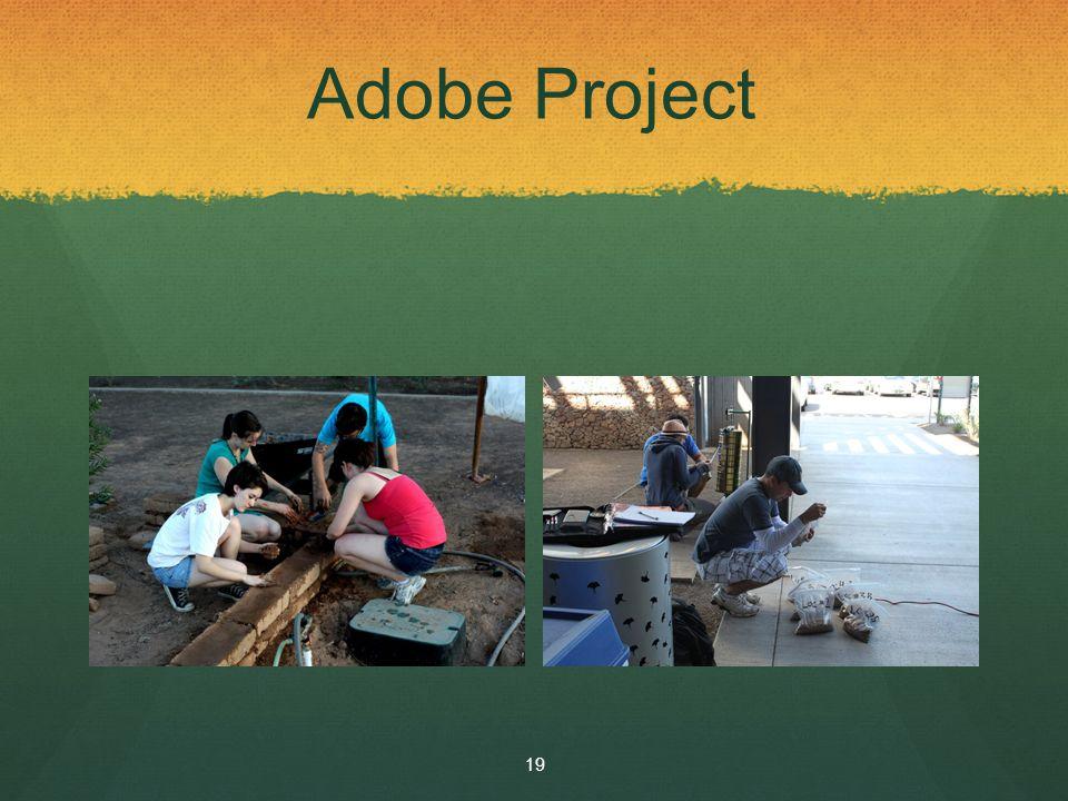 Adobe Project 19
