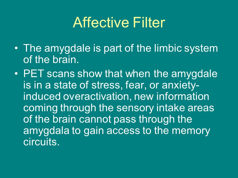 Affective Filter The amygdale is part of the limbic system of the brain.