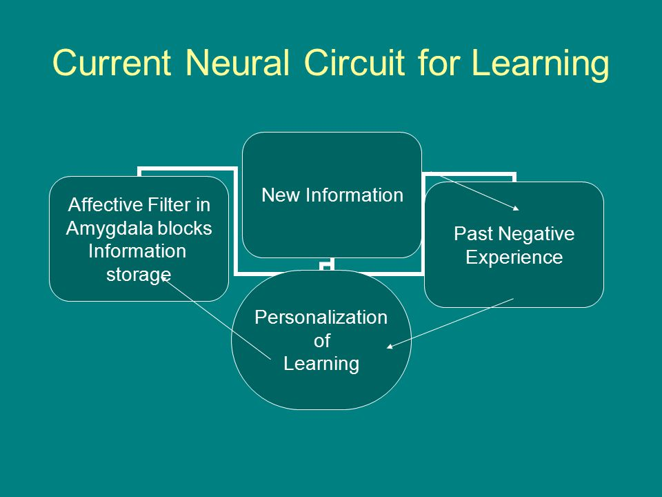 Current Neural Circuit for Learning New Information Affective Filter in Amygdala blocks Information storage Personalization of Learning Past Negative Experience