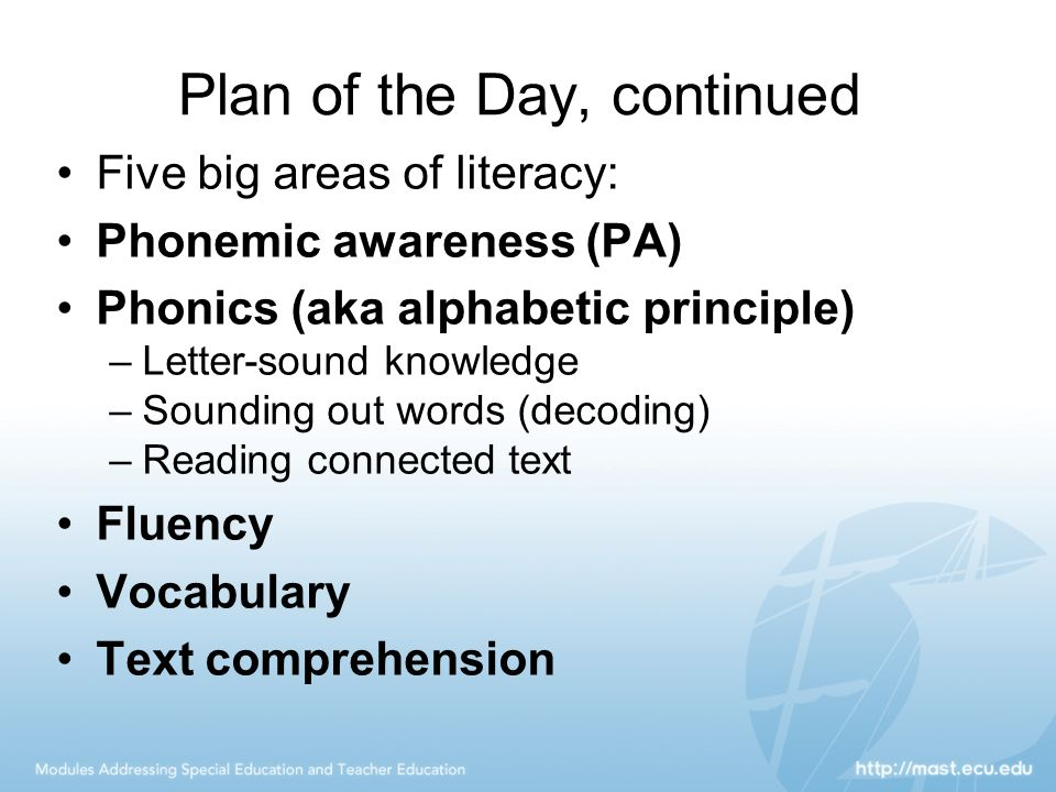 Plan of the Day, continued Five big areas of literacy: Phonemic awareness (PA) Phonics (aka alphabetic principle) –Letter-sound knowledge –Sounding ou