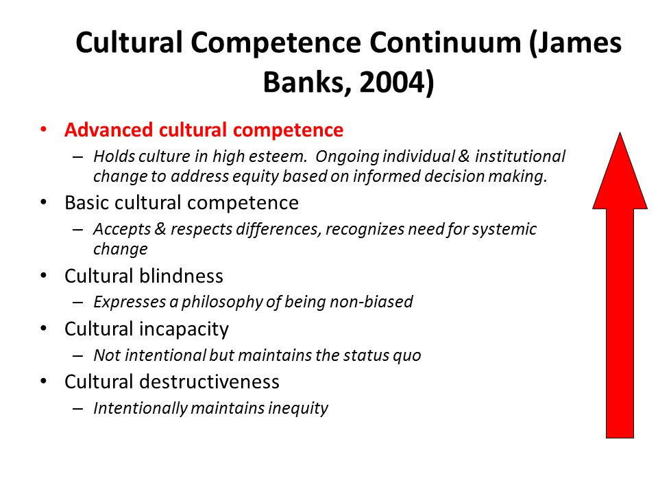 Cultural Competence Continuum (James Banks, 2004) Advanced cultural competence – Holds culture in high esteem. Ongoing individual & institutional chan