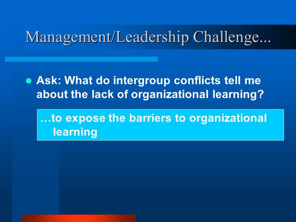 Management/Leadership Challenge...
