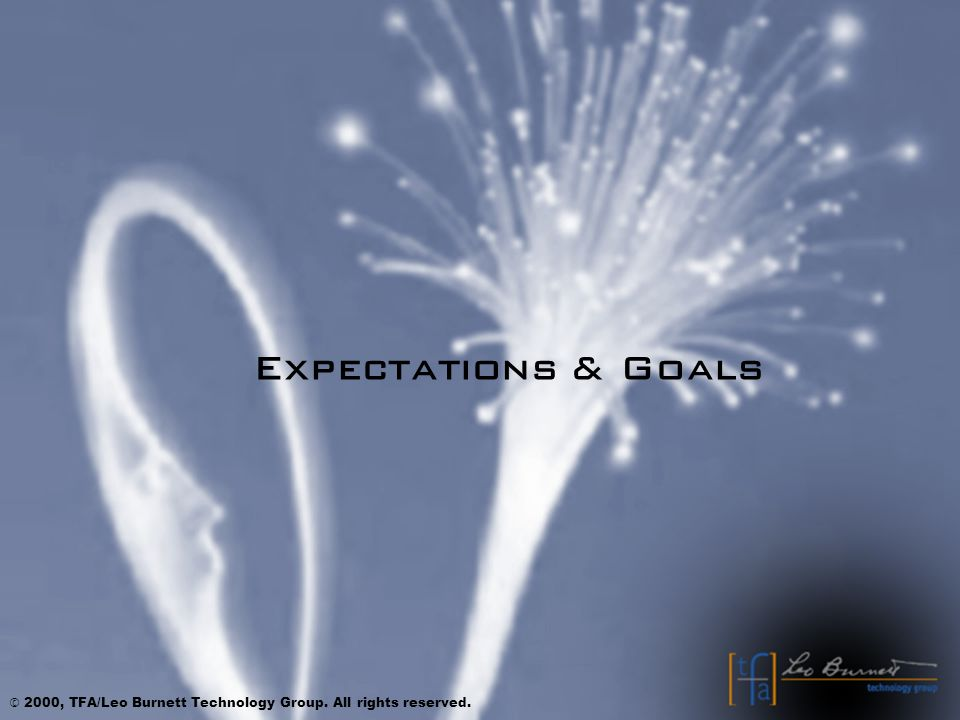 Expectations & Goals © 2000, TFA/Leo Burnett Technology Group. All rights reserved.