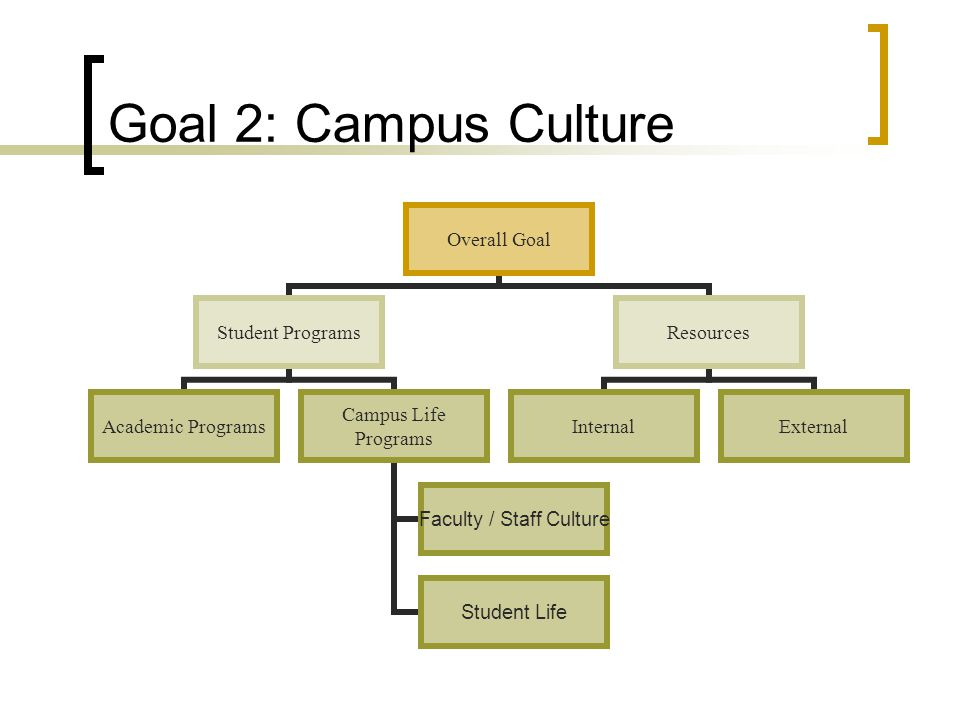 Goal 2: Campus Culture Overall Goal Student Programs Academic Programs Campus Life Programs Faculty / Staff Culture Student Life Resources InternalExternal