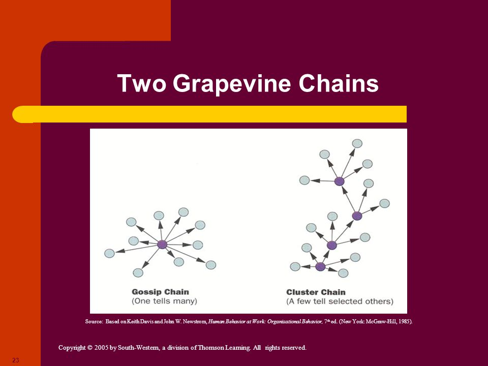 Copyright © 2005 by South-Western, a division of Thomson Learning. All rights reserved. 23 Two Grapevine Chains Source: Based on Keith Davis and John