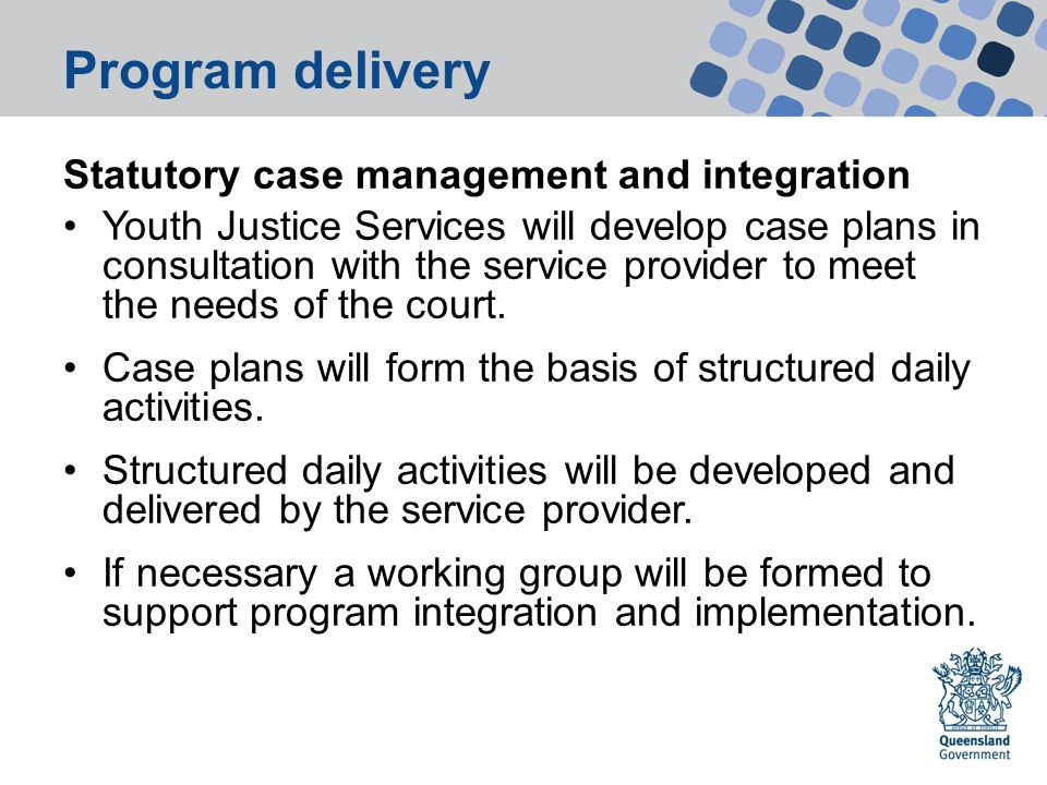 Program delivery Statutory case management and integration Youth Justice Services will develop case plans in consultation with the service provider to meet the needs of the court.