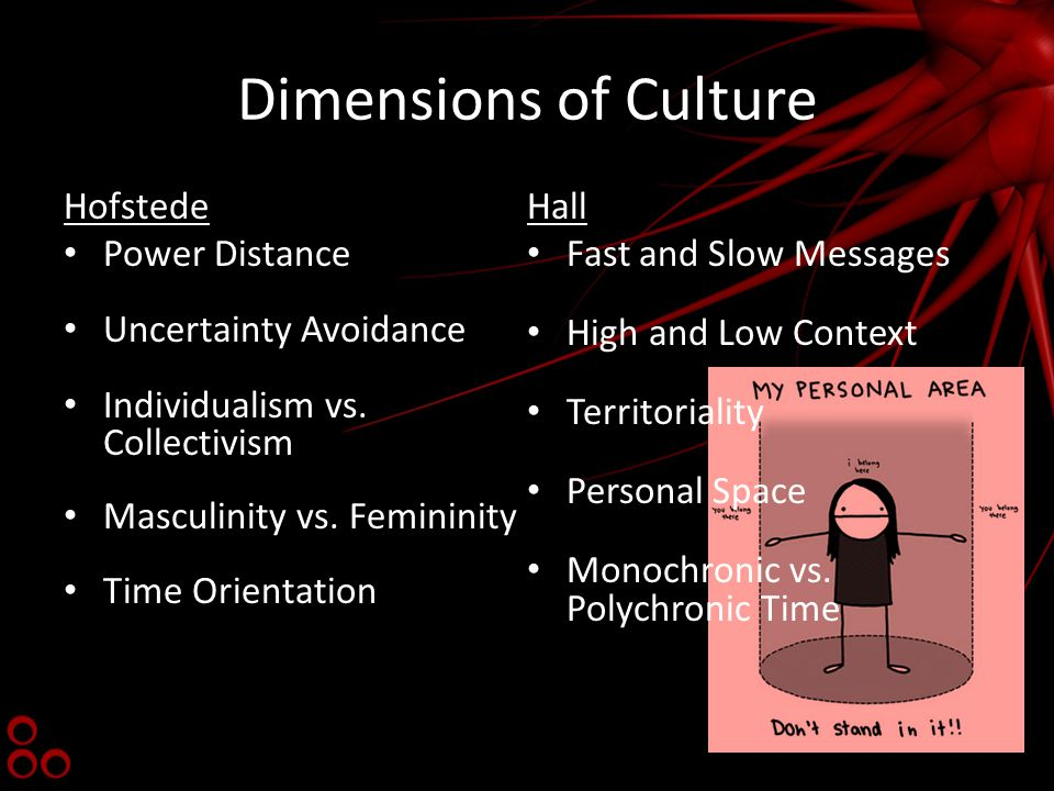 Dimensions of Culture Hofstede Power Distance Uncertainty Avoidance Individualism vs.
