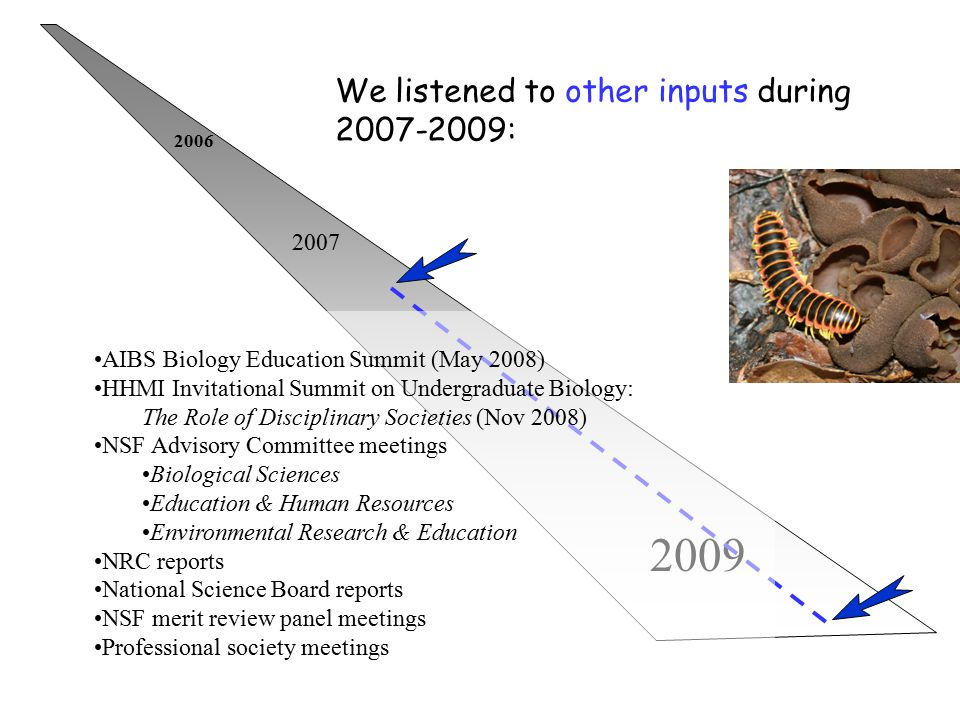 2006 2007 2009 We listened to other inputs during 2007-2009: AIBS Biology Education Summit (May 2008) HHMI Invitational Summit on Undergraduate Biolog