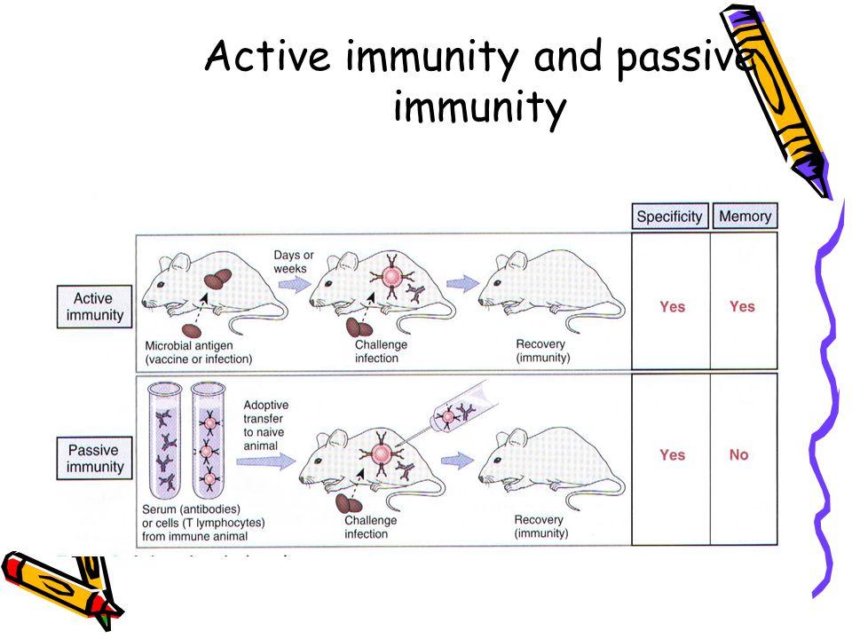 Active immunity and passive immunity