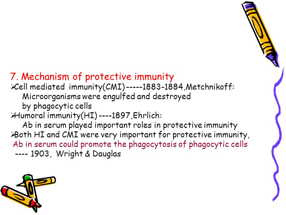 7. Mechanism of protective immunity  Cell mediated immunity(CMI) -----1883-1884,Metchnikoff: Microorganisms were engulfed and destroyed by phagocytic