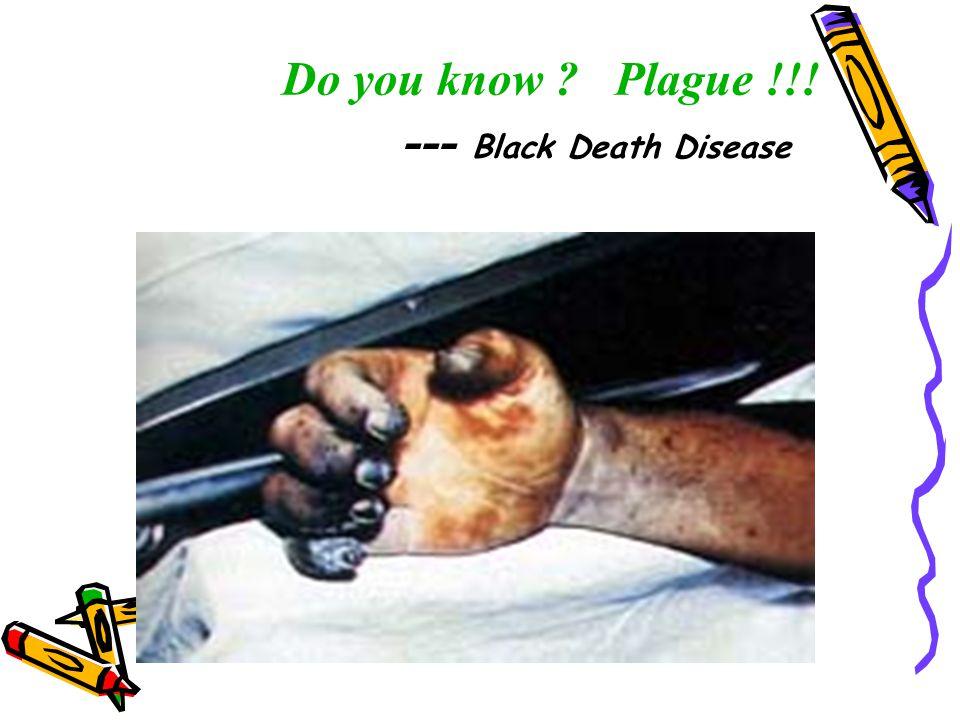 Do you know ? Plague !!! --- Black Death Disease