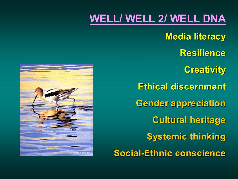 WELL/ WELL 2/ WELL DNA Media literacy ResilienceCreativity Ethical discernment Gender appreciation Cultural heritage Systemic thinking Social-Ethnic c