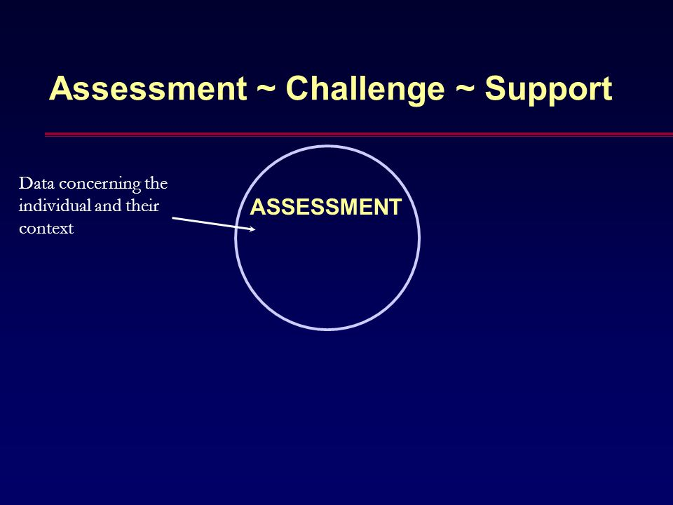 Assessment ~ Challenge ~ Support ASSESSMENT Data concerning the individual and their context