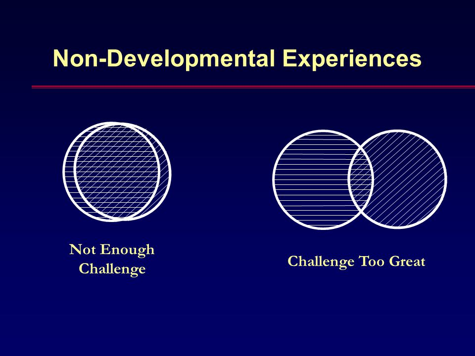 Non-Developmental Experiences Not Enough Challenge Challenge Too Great