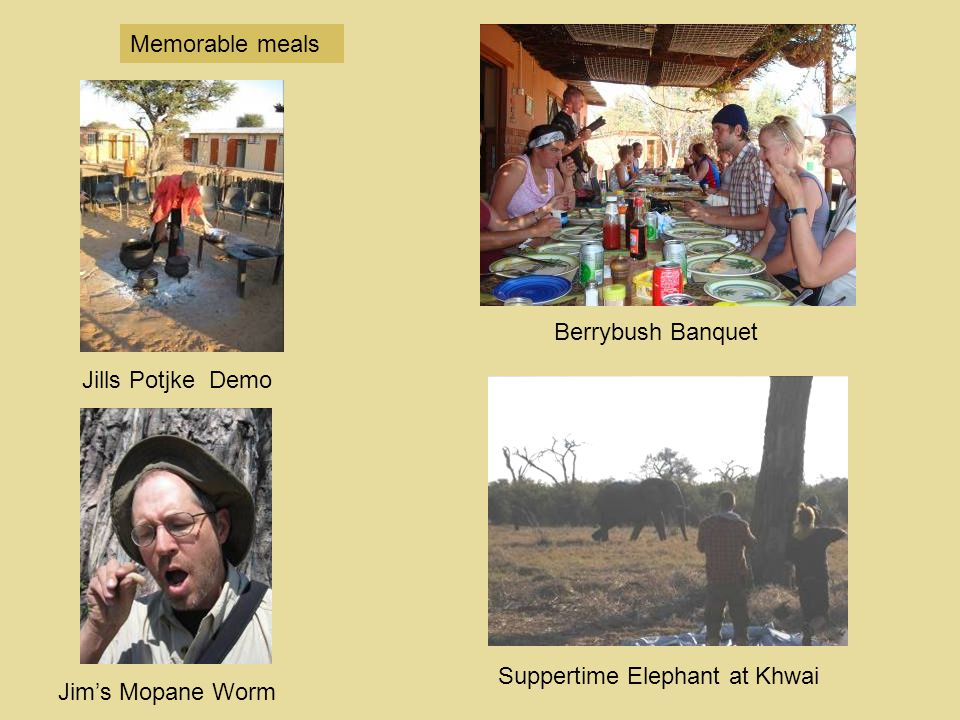 Memorable meals Berrybush Banquet Jills Potjke Demo Suppertime Elephant at Khwai Jim's Mopane Worm