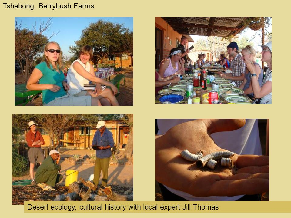 Tshabong, Berrybush Farms Desert ecology, cultural history with local expert Jill Thomas