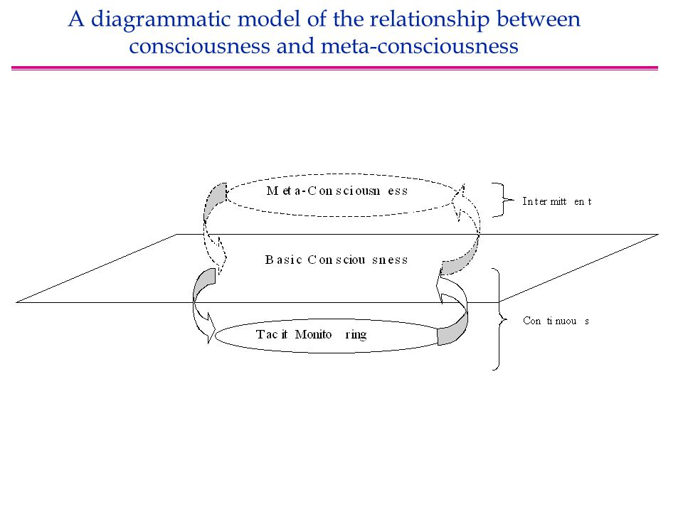 A diagrammatic model of the relationship between consciousness and meta-consciousness