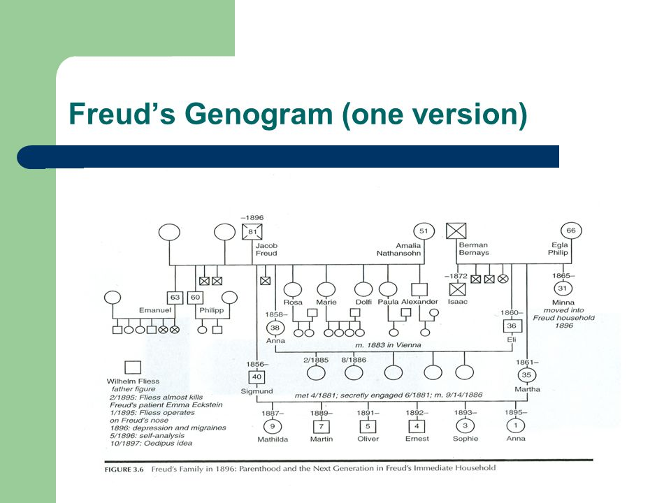 Freud's Genogram (one version)