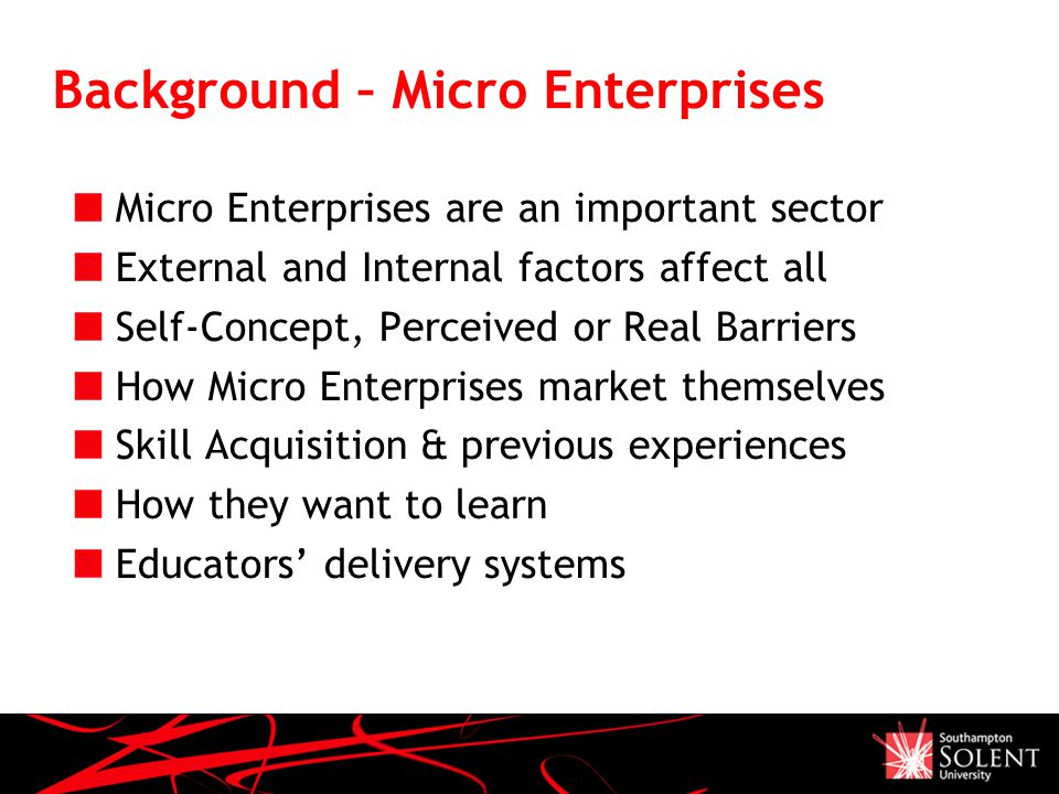 Background – Micro Enterprises Micro Enterprises are an important sector External and Internal factors affect all Self-Concept, Perceived or Real Barriers How Micro Enterprises market themselves Skill Acquisition & previous experiences How they want to learn Educators' delivery systems