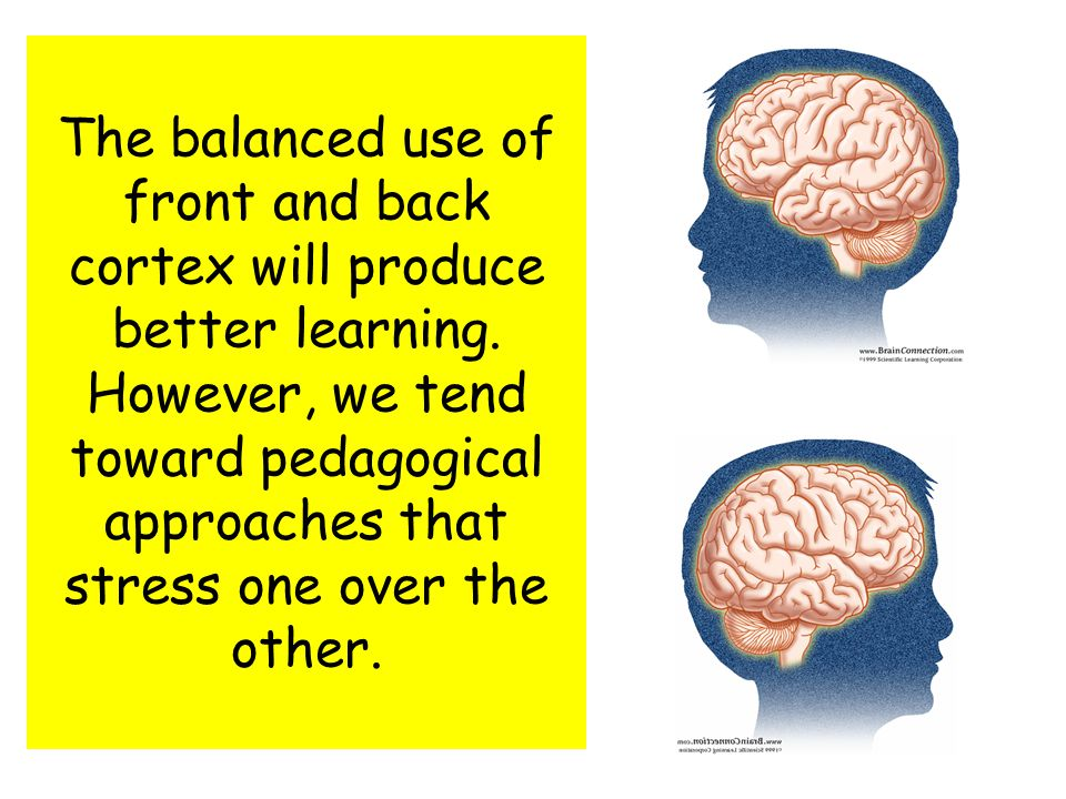 The balanced use of front and back cortex will produce better learning.