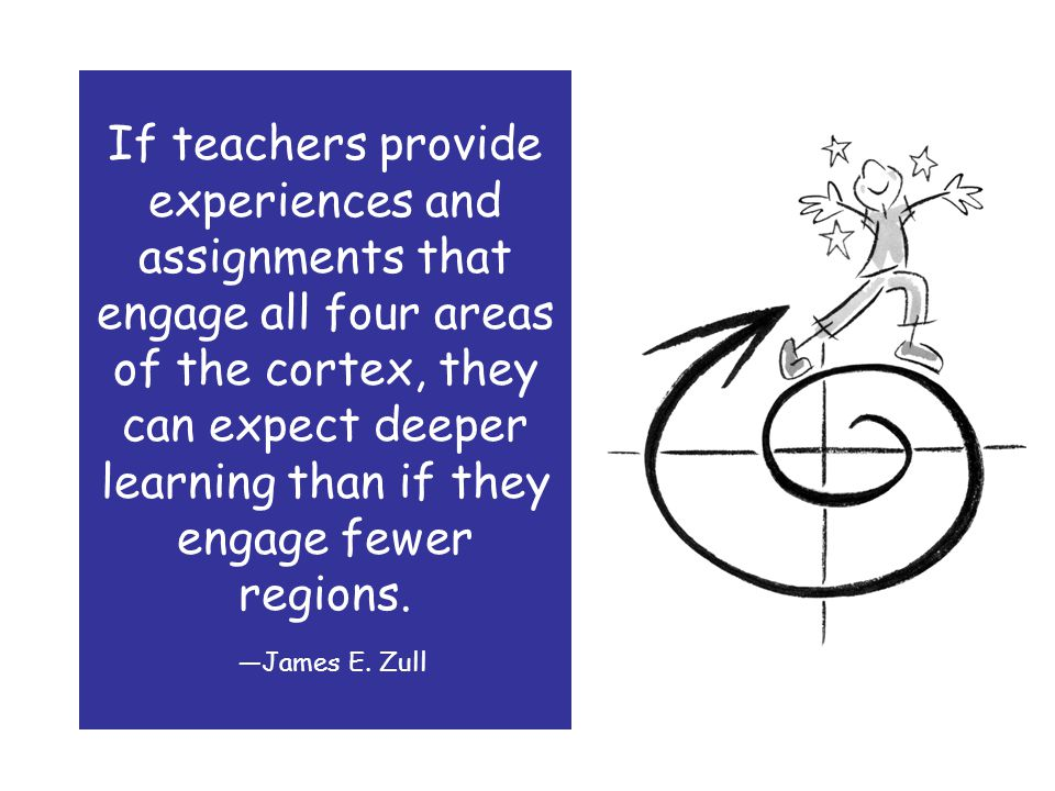 If teachers provide experiences and assignments that engage all four areas of the cortex, they can expect deeper learning than if they engage fewer regions.