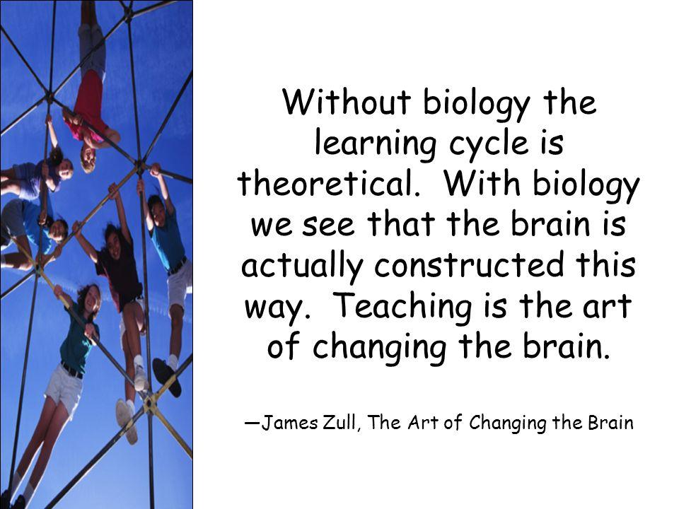 Without biology the learning cycle is theoretical.