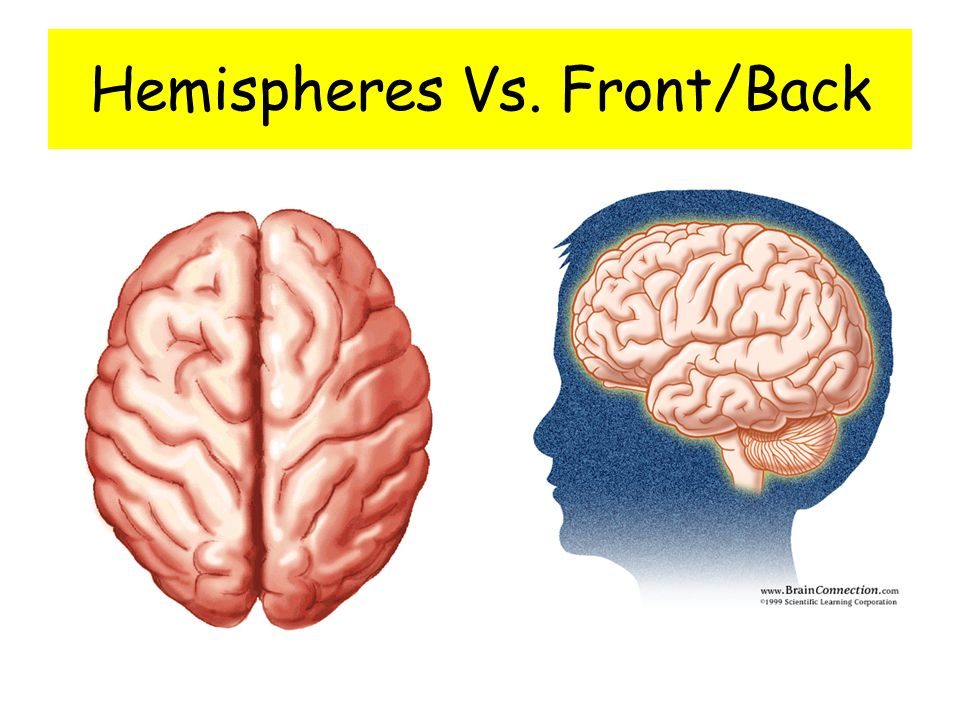 Hemispheres Vs. Front/Back