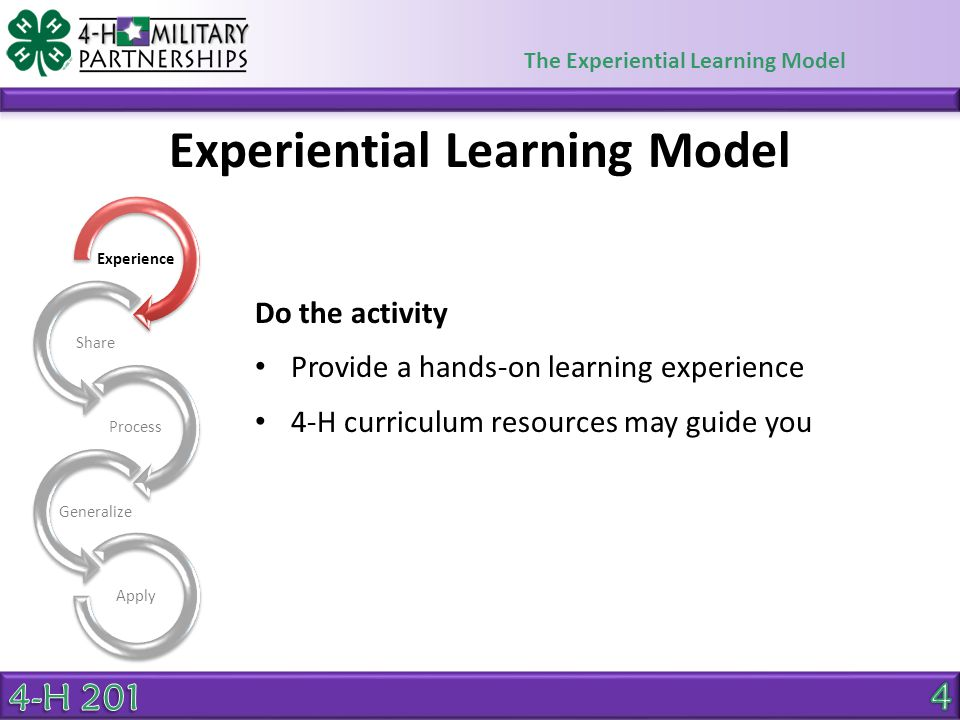 The Experiential Learning Model Experiential Learning Model Youth talk about the activity Avoid questions that can be answered with a yes or no Some examples of Share questions: What did you do/see/hear/feel/smell/taste during the activity.