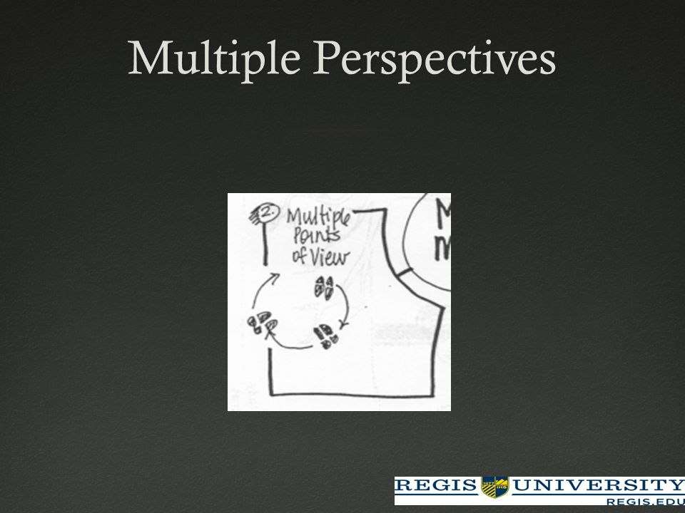 Multiple PerspectivesMultiple Perspectives