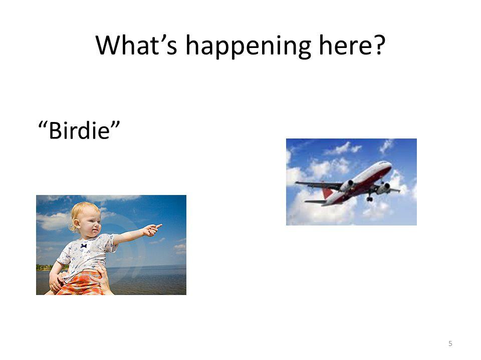 What's happening here? 5 Birdie