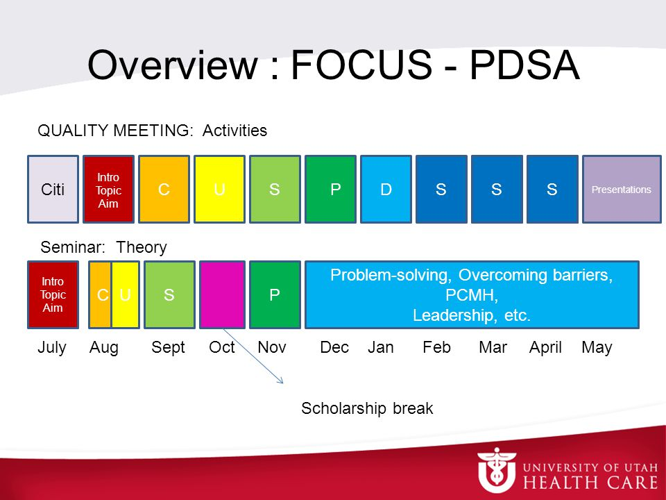 Overview : FOCUS - PDSA CitiCUSPDS Presentations July Aug Sept Oct Nov Dec Jan Feb Mar April May Intro Topic Aim CUSP Problem-solving, Overcoming barriers, PCMH, Leadership, etc.