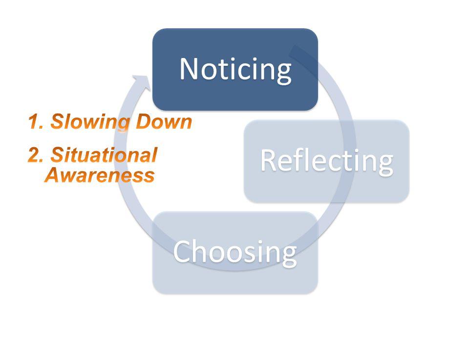 NoticingReflectingChoosing