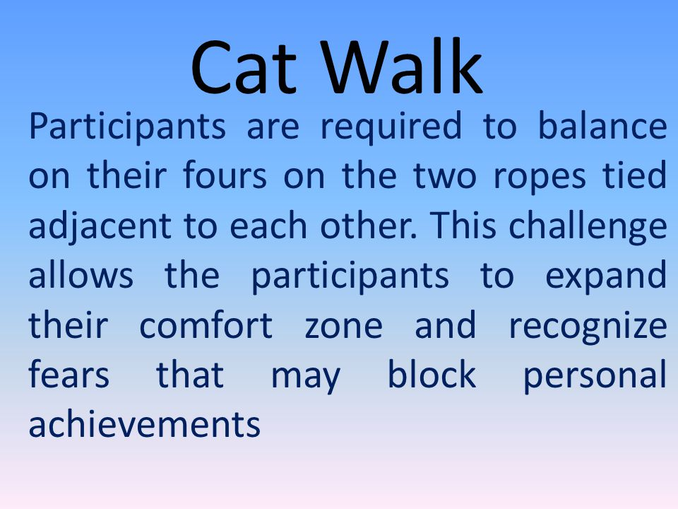 Cat Walk Participants are required to balance on their fours on the two ropes tied adjacent to each other.