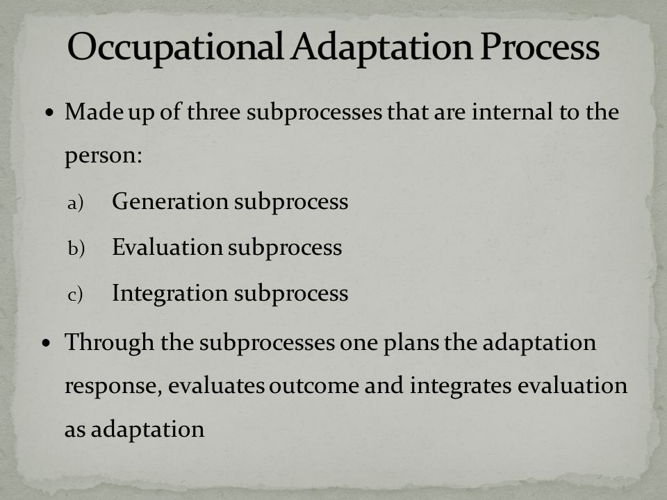 Made up of three subprocesses that are internal to the person: a) Generation subprocess b) Evaluation subprocess c) Integration subprocess Through the subprocesses one plans the adaptation response, evaluates outcome and integrates evaluation as adaptation
