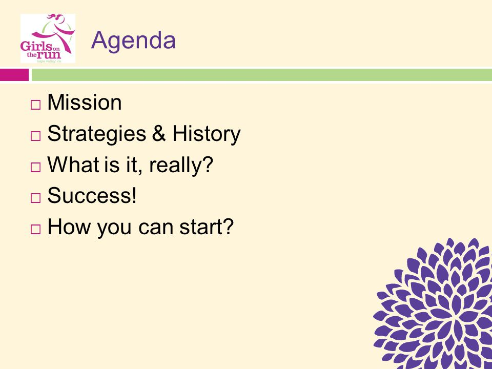 Agenda  Mission  Strategies & History  What is it, really?  Success!  How you can start?