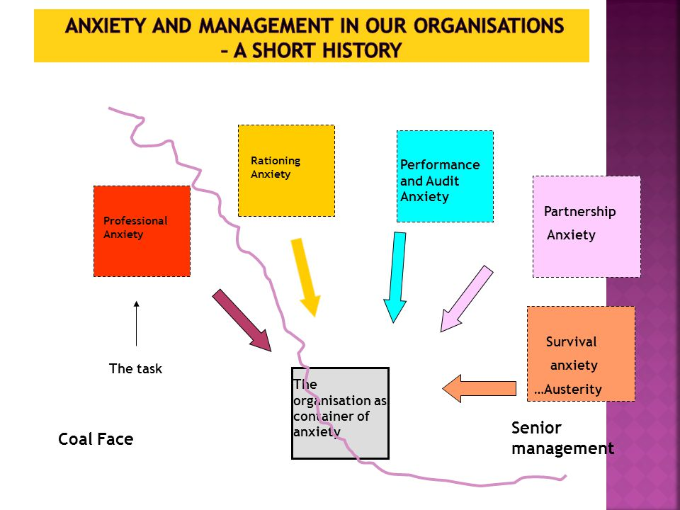 Professional Anxiety Rationing Anxiety Performance and Audit Anxiety The organisation as container of anxiety Coal Face Senior management Partnership Anxiety Survival anxiety …Austerity The task
